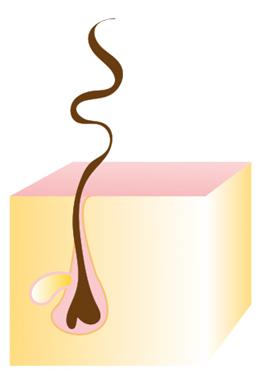 Cabello rizado cosméticos laita